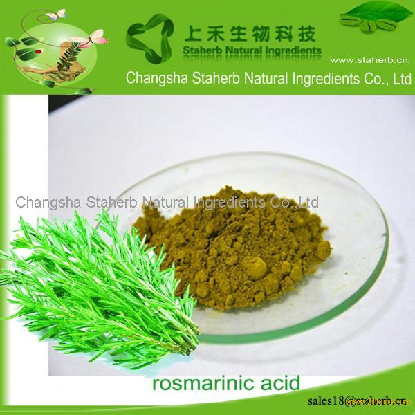 Hot sale rosmary extract, Rosmarinic acid,Antioxidant