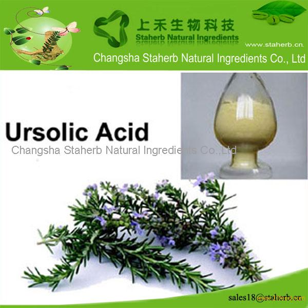 Chinese source Rosemary extract,Ursolic acid,Antioxidant