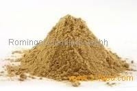Ginger Powder For Sale