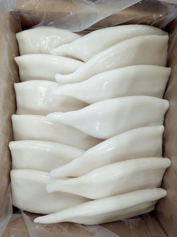 EU treated frozen squid tubes