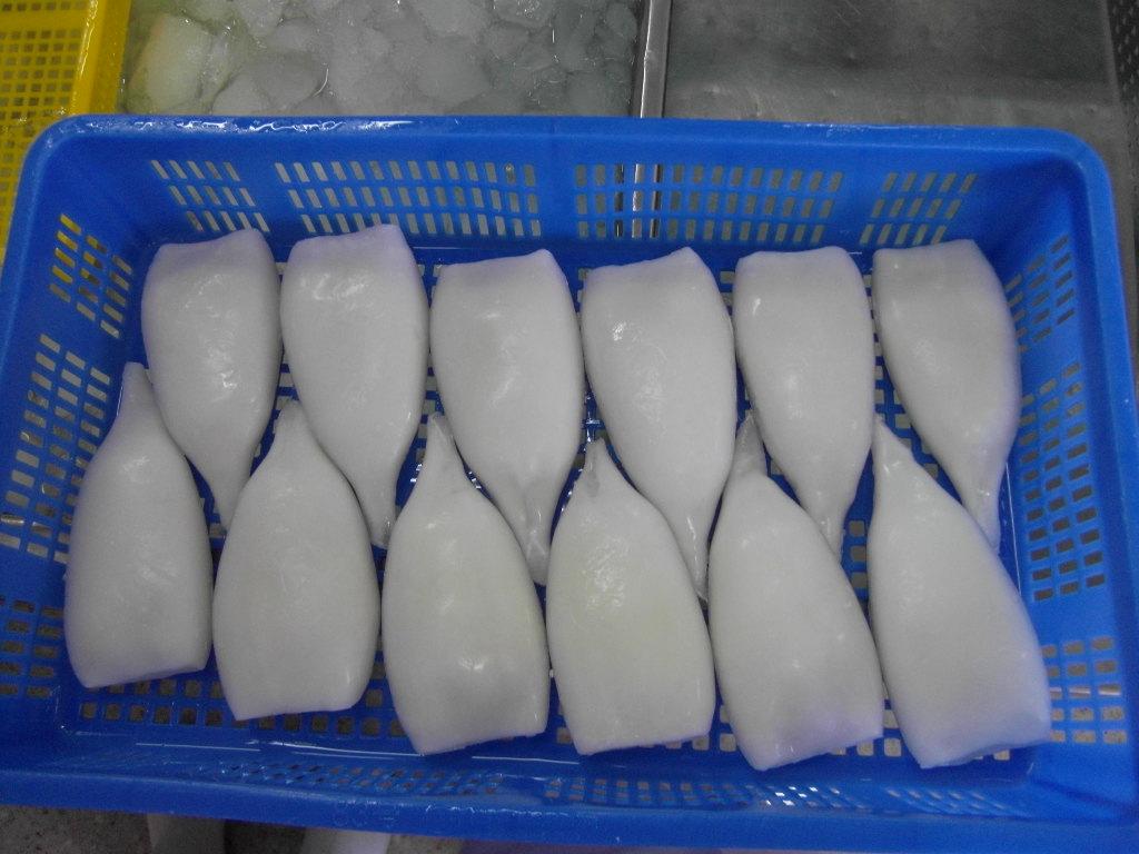 Frozen squid tubes skinless