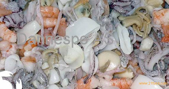 Frozen Squid, Shrimp, Sea Cucumber, Whelk Clams, and Cuttlefish