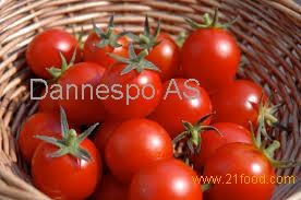 Canned Tomato Paste, Tomato Sauce