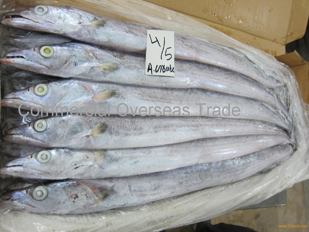 Frozen Ribbon Fish for sale. 30% Discount