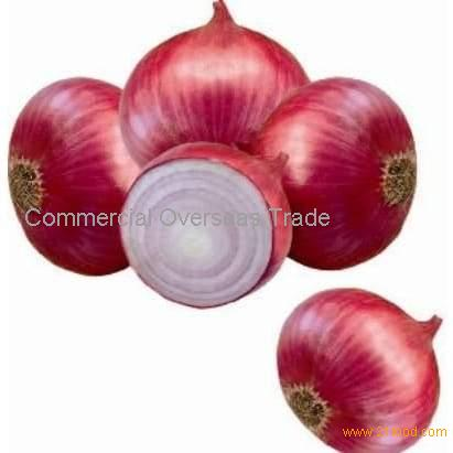 Fresh Onion. Red onion and Yellow Onion available on 30% sale now