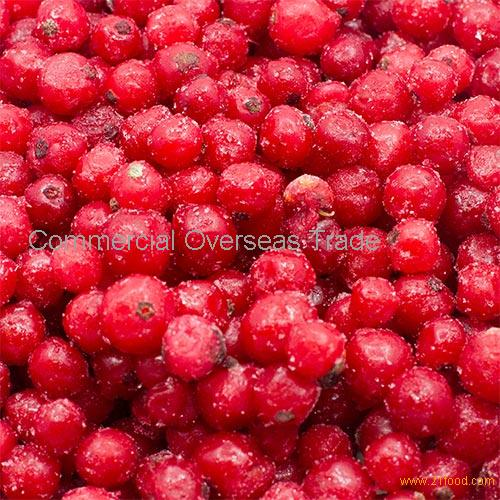 IQF Red Currant, Redcurrant Puree, Redcurrant concentrate on sale, 30% discount