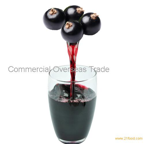 Blackcurrant Juice Concentrate on sale, 30% discount