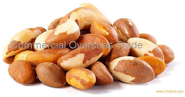 Raw Brazil Nuts (No Shell), Roasted Brazil nuts now available