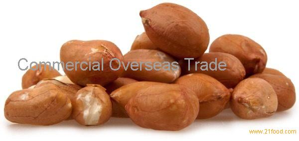 Quality Peanuts (In-Shell, Blanched, Java, Bold, Flour) Now Available for sale