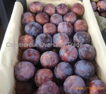 Organic Fresh Plums now available on sale. 30% Discount
