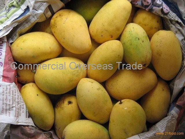Fresh Mangoes now Available on Sale. 30% discount