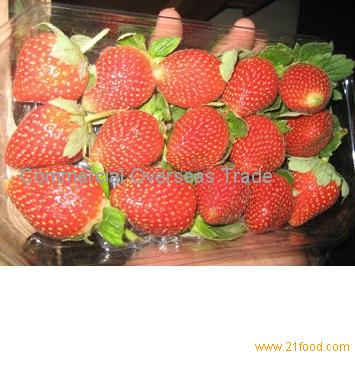 Quality Fresh Strawberries now available on sale. 30% discount