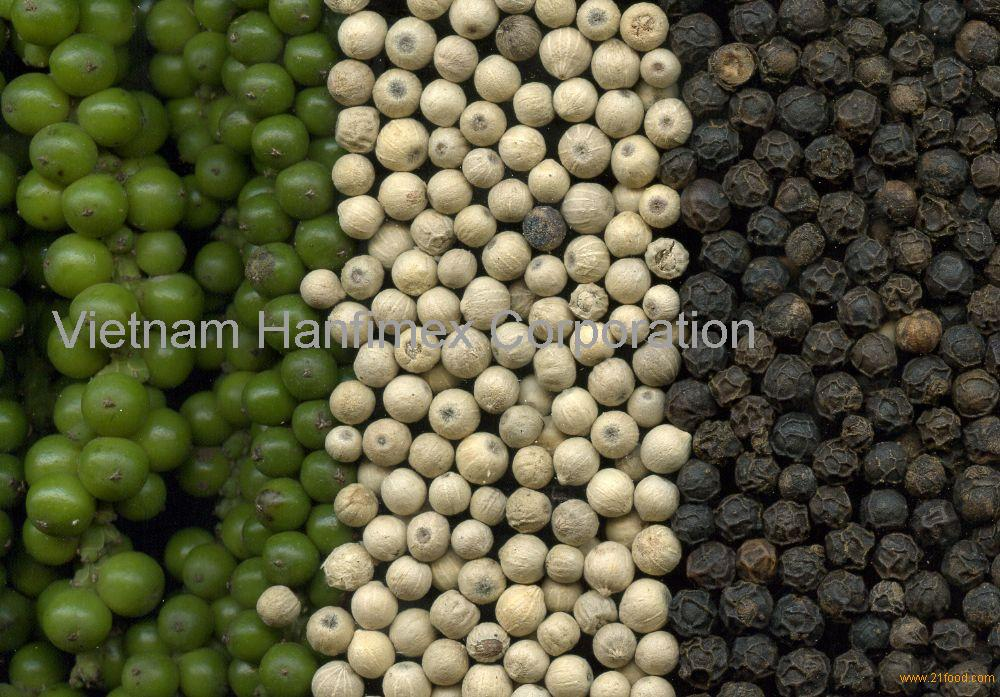 Vietnam Black Pepper Factory Best Quality