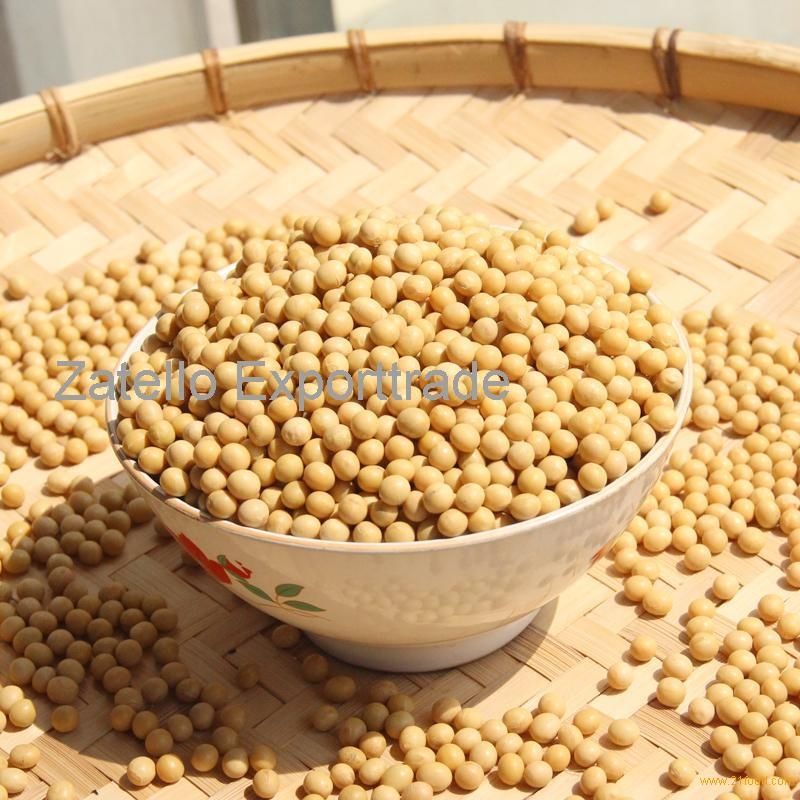 Grade A Non GMO dried cheap 5-8MM yellow soybean for sale