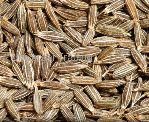 Cumin seed for sales