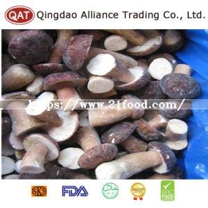 Top Quality Whole Boletus Mushroom with Good Price