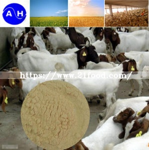Feed Grade Amino Acid Powder Free Chloridion