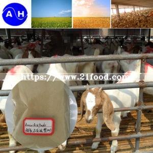 Amino Acid Powder for Feed Grade