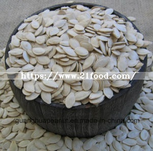 Best Quality Roasted and Salted Snow White Pumpkin Seeds