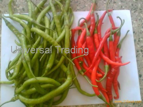 Lombardi pepper for sales