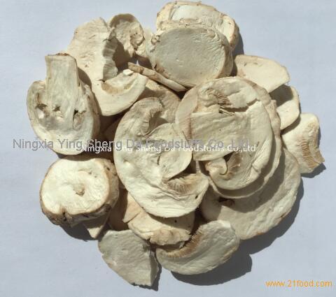 Freeze Dried Button Mushroom Slice