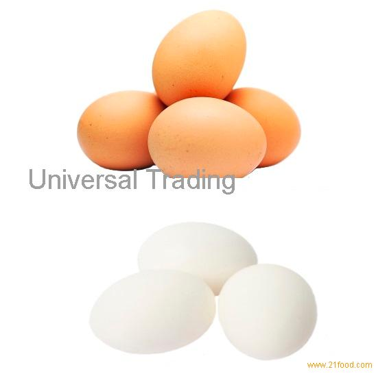 Fresh white and brown chicken eggs.