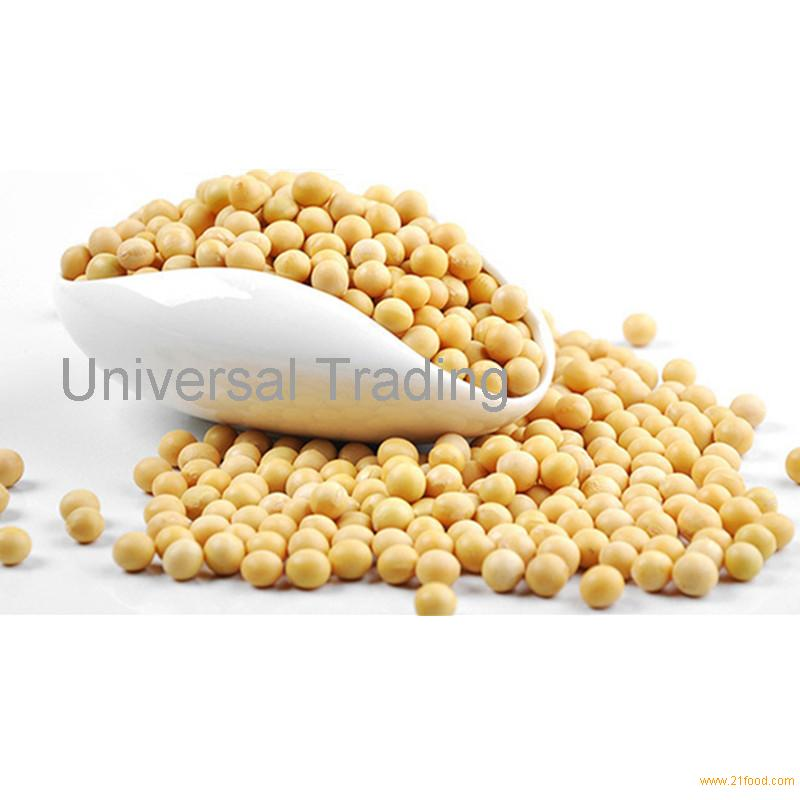 Dried Bulk Soybean Seed