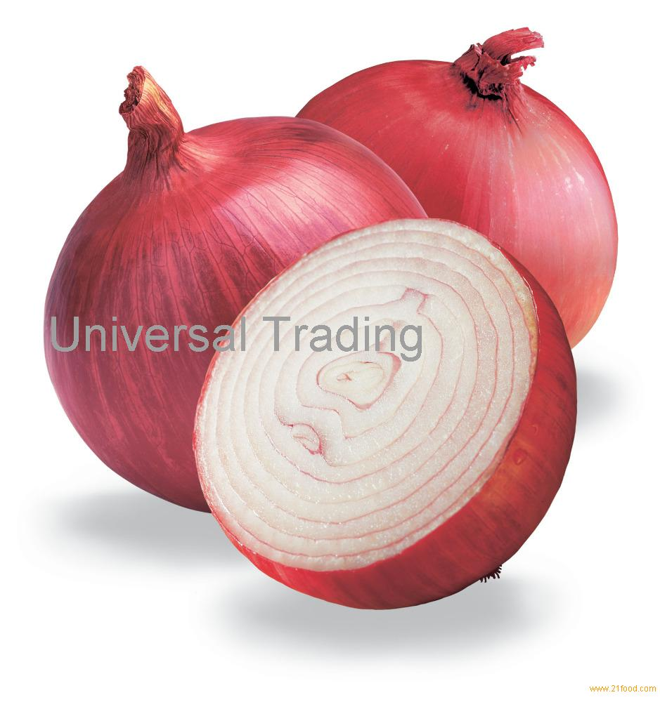 Fresh Onion for sale.