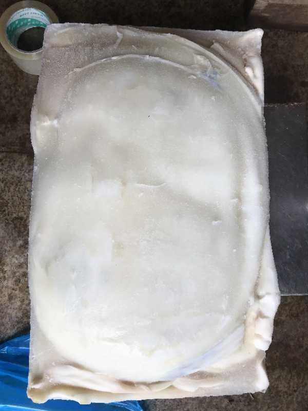Frozen Indian squid fillet