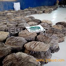 Dry Salted Beef Omasum and Buffalo Offals / Halal Beef Omasum/ Dried Salted