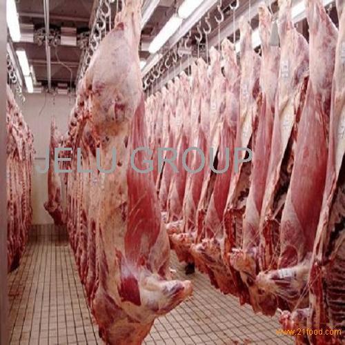 Halal Buffalo Beef Meat,Fresh Halal Buffalo Boneless Meat/ Frozen Beef Omasum/ Frozen Beef for sale