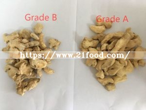 Dried Ginger Flakes/Slice/Powder
