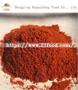 Professional Chili Deep Processing / Chili Powder