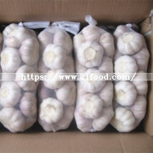 2018 Shandong New Crop Fresh Normal Purple Pure White Garlic