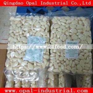 Carton Packing 1kg Vacuum Bagx10 Fresh Peeled White Garlic Clove Granule Garlic
