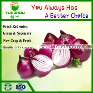 Natural Onion Fresh Big Red Onion From China with Cheap Price