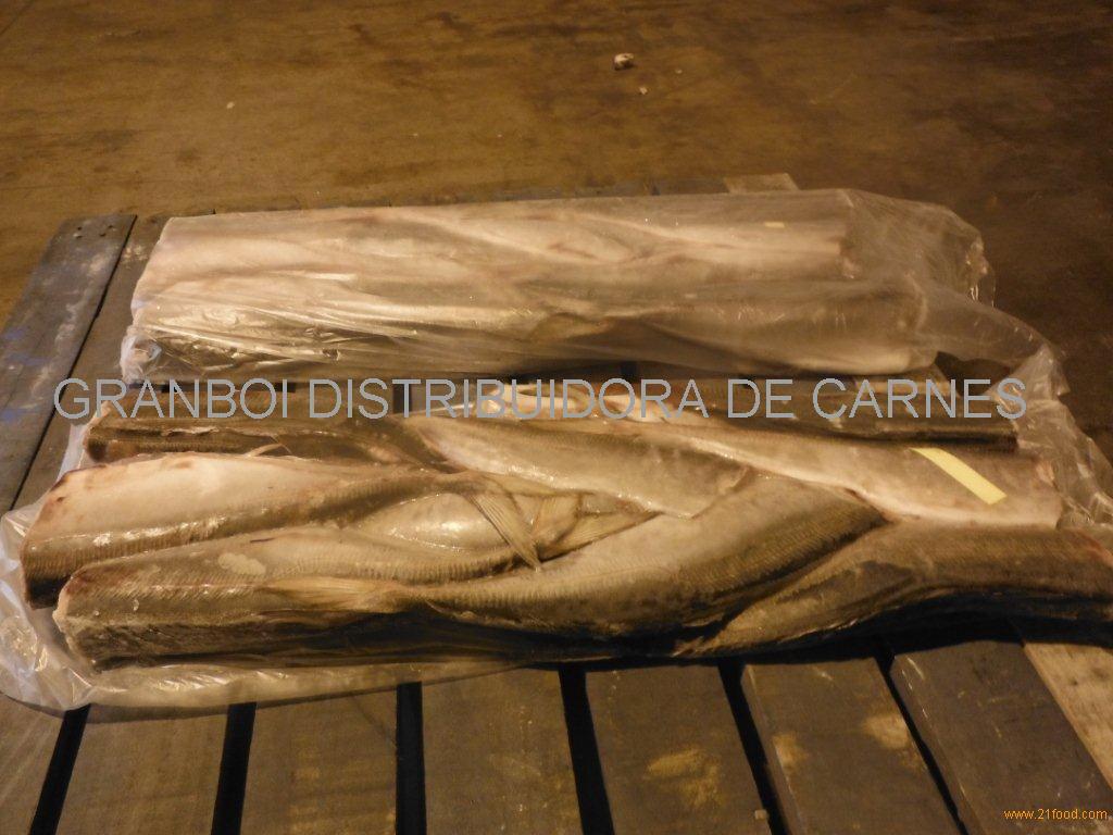 Horse Mackerel (Trachurus spp)