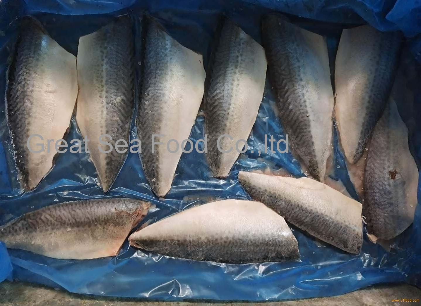 Frozen pacific mackerel fillets 100g+