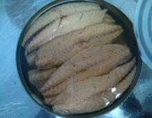 MACKEREL FILLETS CANNED FOOD CANNED FISH