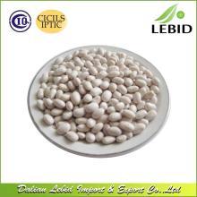 Japanese Type Kidney Beans White Kidney Beans