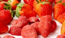 Organic Freeze Dried Fruits