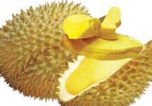 Freeze Dried Durian Slice / Powder