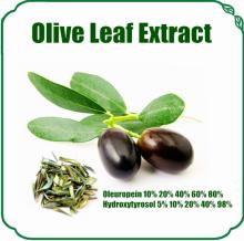100% Natural Olive Leaf Extract Oleuropein
