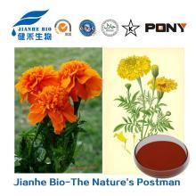 Antioxidant Lutein/Marigold Extract 5%-80% powder /Beadlets 5% 10%