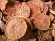 Dried betel nut coin