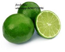 vietnam fresh lime whatsapp 84903721896
