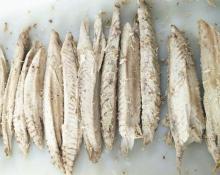 frozen precooked bonito loin(auxis thazard)