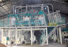 Complete Wheat  Flour   Mill ing  Plant