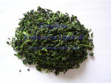 new harvest Certified 100% Natural top grade Dehydrated Spinach Instant Vegetables