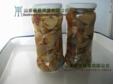 Canned Mixed Mushroom